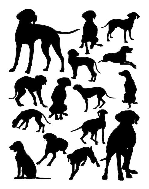 Венгерский viszla собака животных силуэт Premium векторы