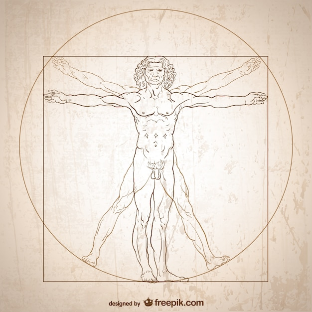 Vitruvian man vector. Free Vector