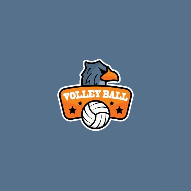 Volleyball logo with a gray background