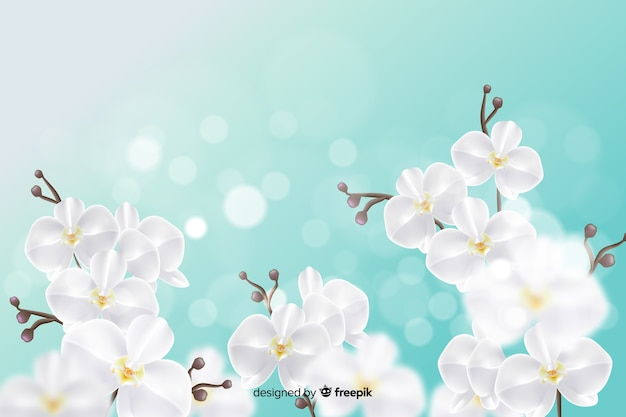 Wallpaper design with realistic flowers Free Vector