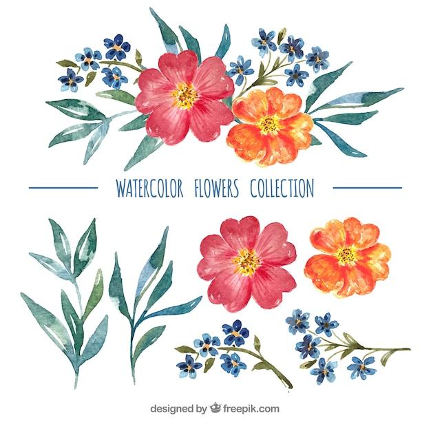 Набор ярких цветов в стиле watecolor Бесплатные векторы