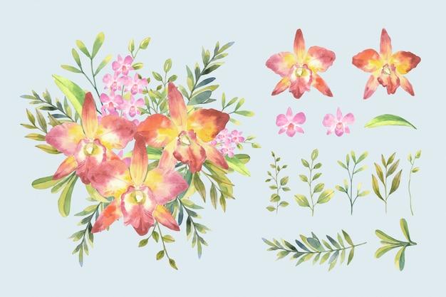 水の色のピンクの蘭と分離された配置と植物のスタイルで葉の花束とカトレア蘭セットイラスト。 Premiumベクター