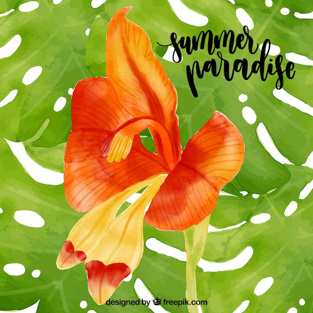 Water color summer paradise - tropical flower\ background