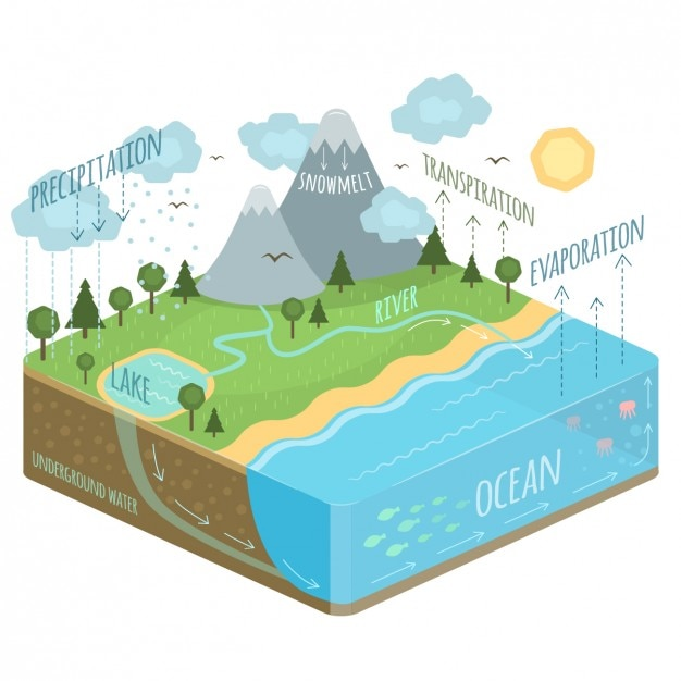 Water cycle diagram vector free download water cycle diagram free vector ccuart Choice Image