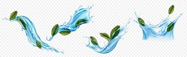 Брызги воды с набором листьев ментола или мяты Бесплатные векторы