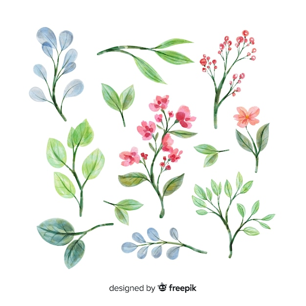Watercolor artistic floral branch collection Free Vector