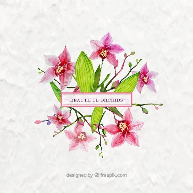 水彩画、美しい蘭の花 Premiumベクター