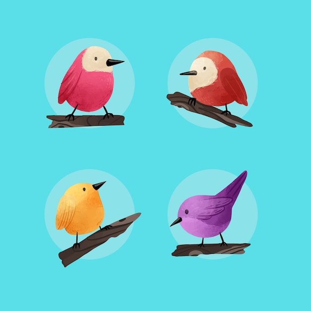 Collezione di uccelli dell'acquerello Vettore gratuito
