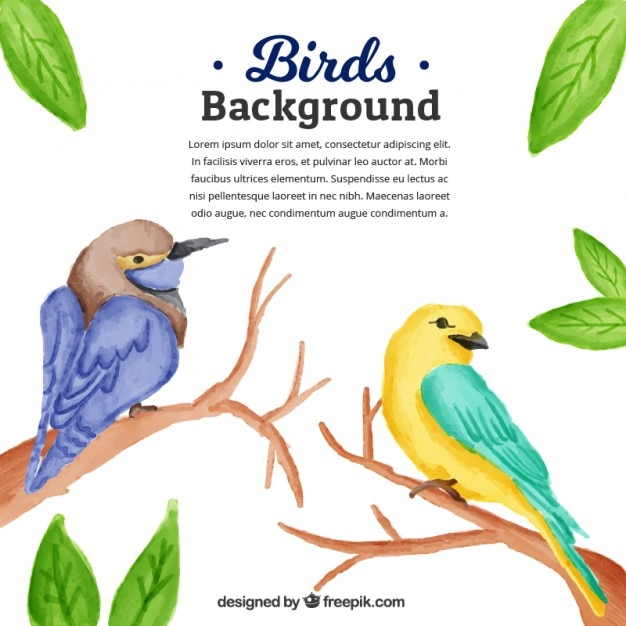 Watercolor birds with branches\ background