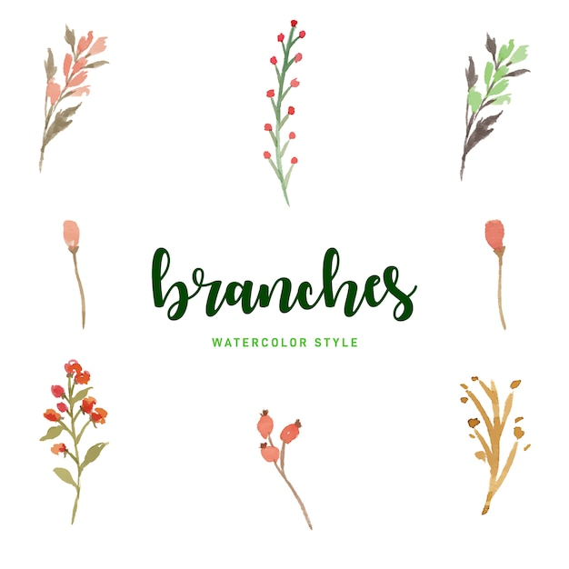 Watercolor branches set free vector Premium Vector