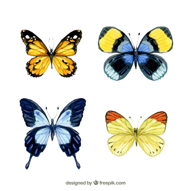 Watercolor butterflies Free Vector