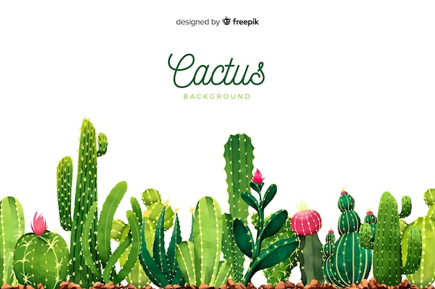 Watercolor cactus background Free Vector