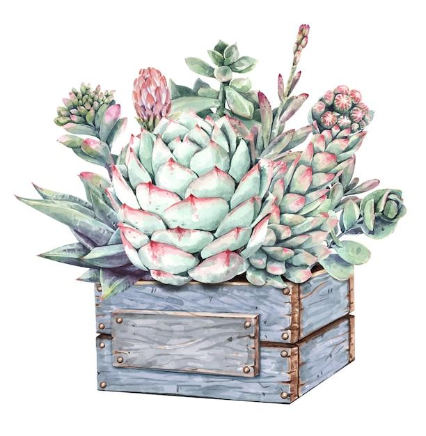 ウッドサボテンツリーボックスと水彩のサボテンサボテンと多肉植物のブーケ。 Premiumベクター