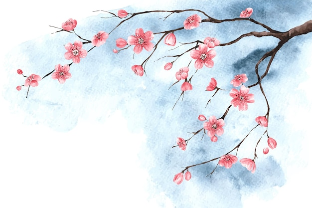Carta da parati acquerello fiori di ciliegio Vettore gratuito