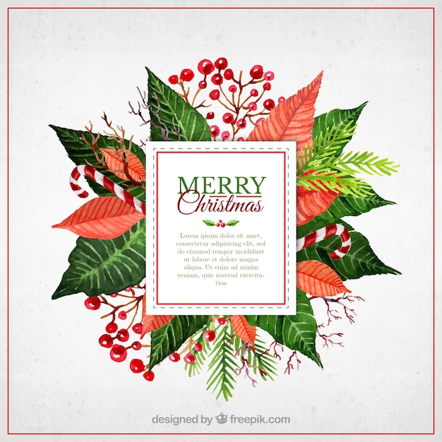 Watercolor christmas flowers label Vector | Free Download