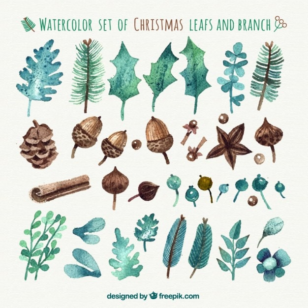 Watercolor christmas leafs and branches Free Vector