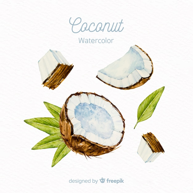 Watercolor coconut background Free Vector