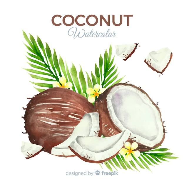 Watercolor coconut background Free Vector