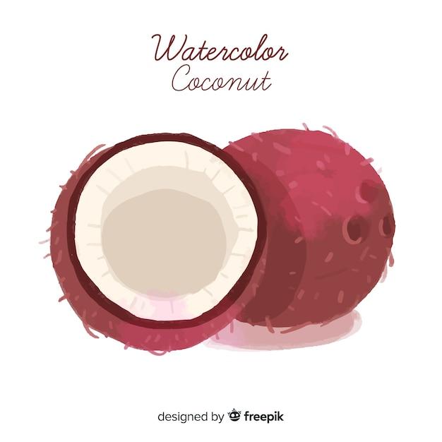Watercolor coconut illustration Free Vector