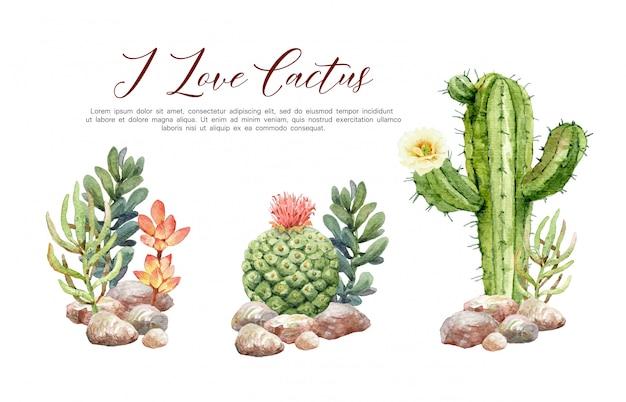 Watercolor collection cactus in stones. Premium Vector