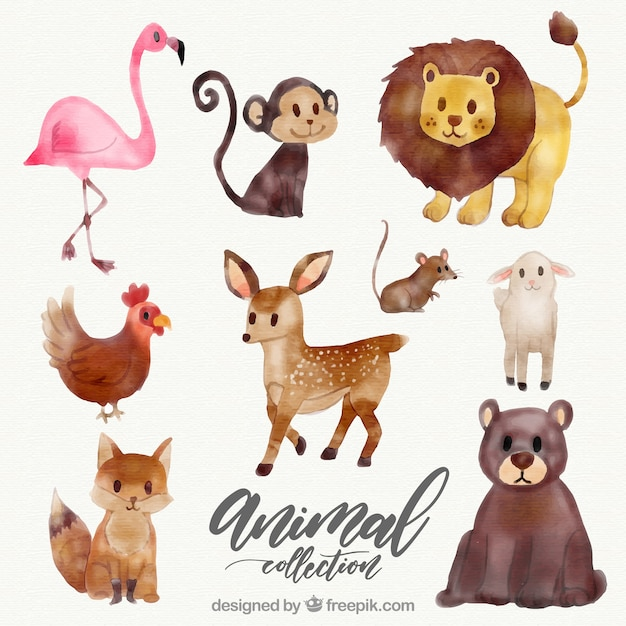 watercolor collection of wild animals vector free download cute monkey clip art free cute monkey clip art on cd