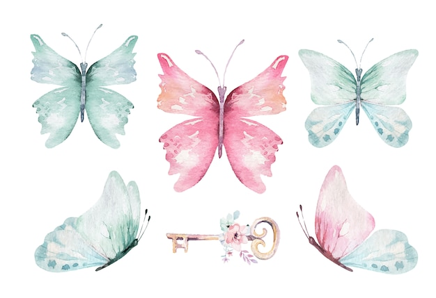 Watercolor colorful butterflies, isolated on white background. Premium Vector