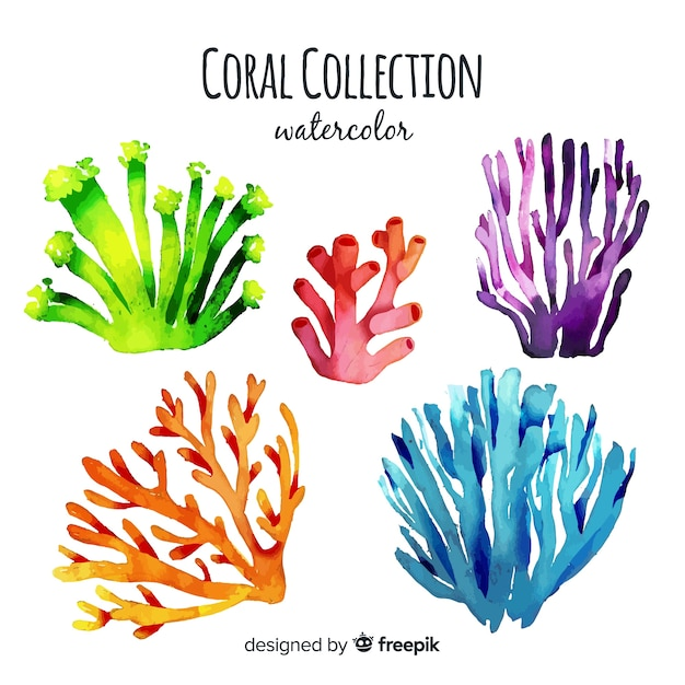 Watercolor coral collection Vector | Free Download
