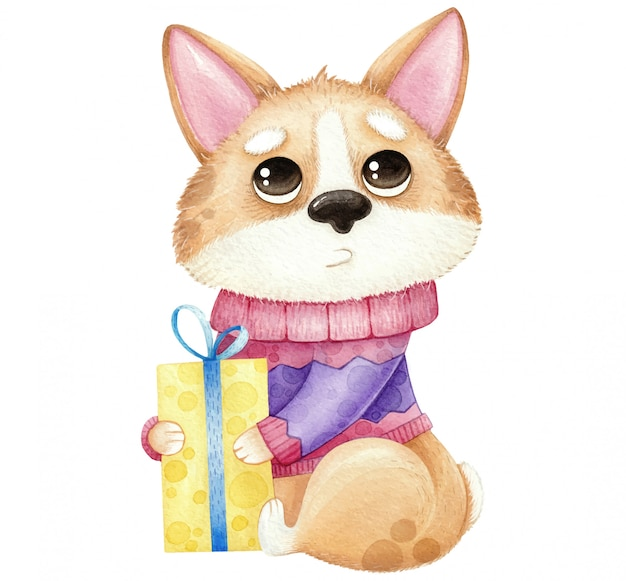 Watercolor cute dog corgi with gift isolated on white Premium Vector