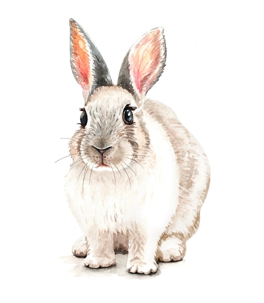 水彩かわいいウサギのイラスト。 tシャツプリント。 Premiumベクター