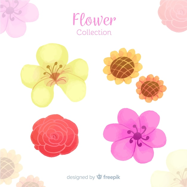 Watercolor decorative floral element collection Free Vector