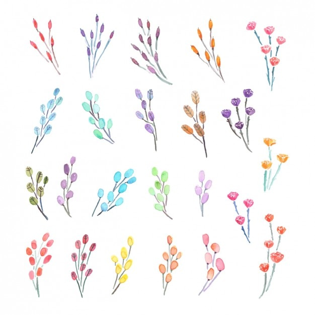 watercolor decorative flowers collection free vector - Decorative Flowers