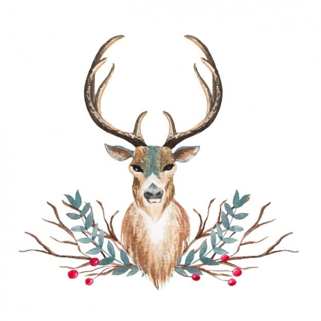 Watercolor deer design Vector | Free Download