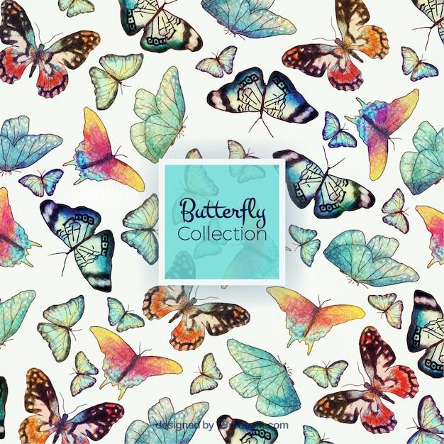 Watercolor different butterflies Free Vector