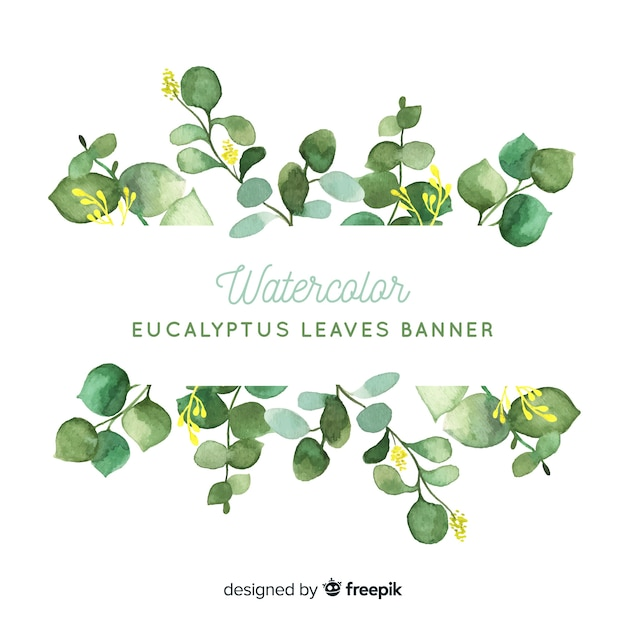 Watercolor eucalyptus leaves background Free Vector