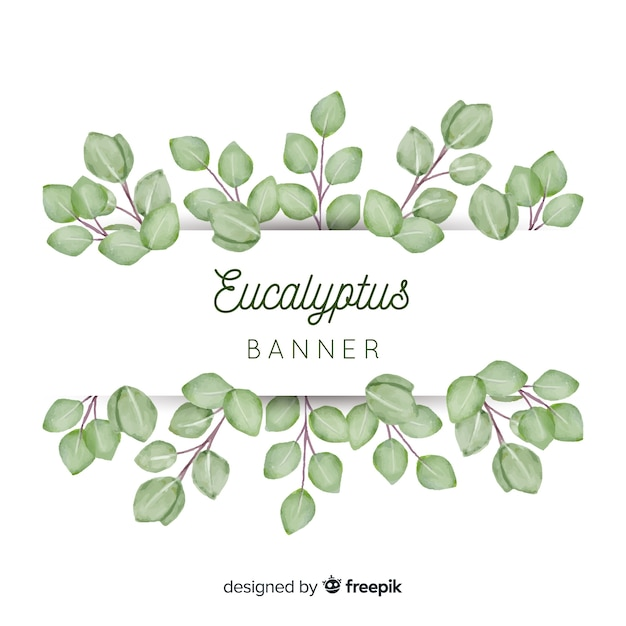 Watercolor eucalyptus leaves banner Free Vector