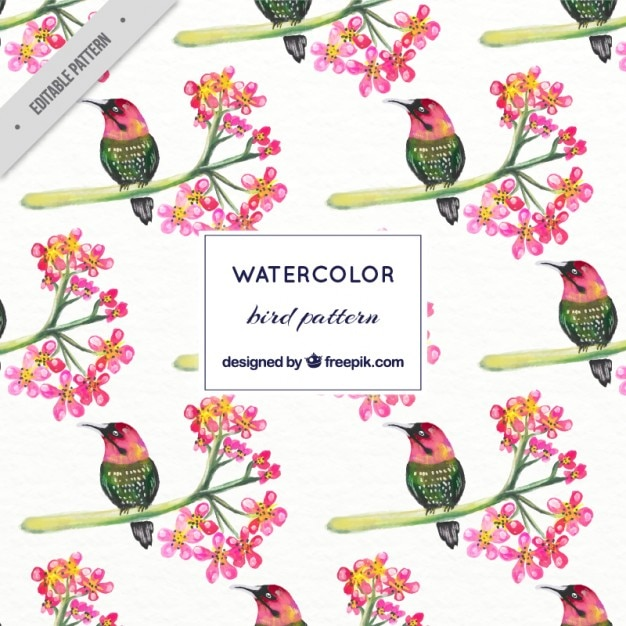 Watercolor exotic bird with flowers\ pattern