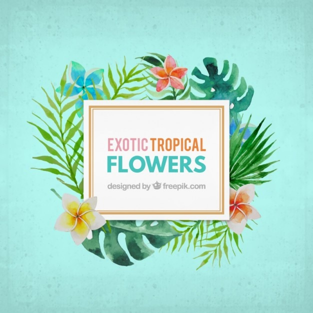 watercolor exotic flower label vector  free download, Beautiful flower