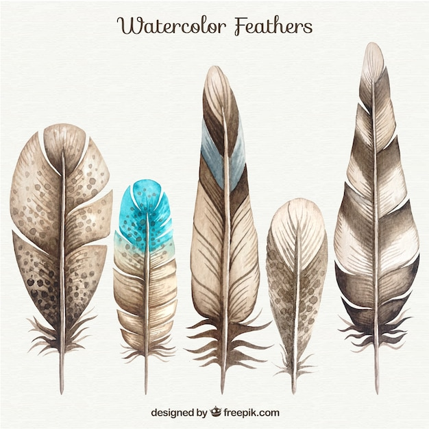 indian feather background feathers - photo #6