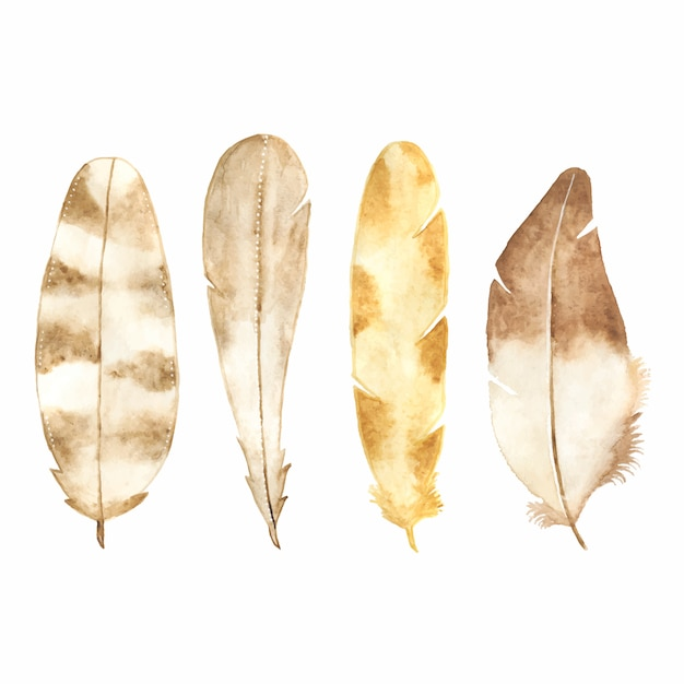 Watercolor feather set isolated on white Free Vector