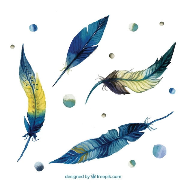 Watercolor feathers Free Vector