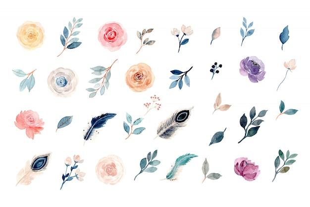 수채화 꽃과 깃털 요소 컬렉션 프리미엄 벡터