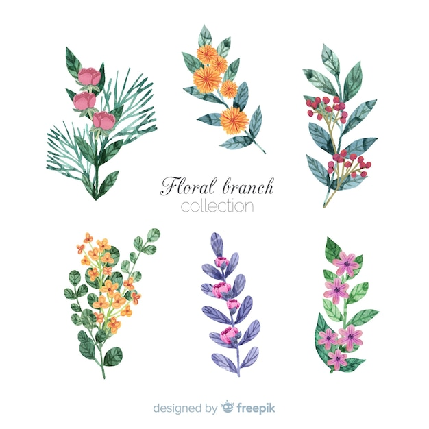 Watercolor floral branch collection Free Vector