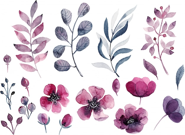 Watercolor floral decorations Premium Vector