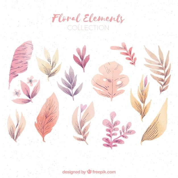 Watercolor floral element collection Premium Vector