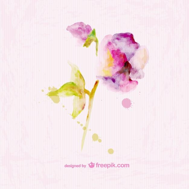 Watercolor floral paper texture card\ design