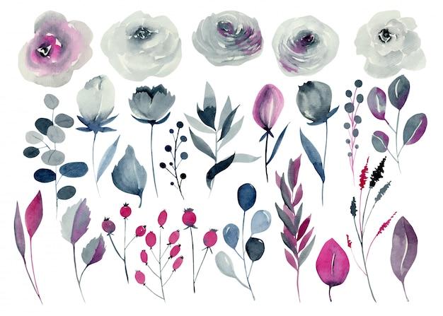 Акварель цветочные набор, индиго и малиновые розы, другие цветы и растения, рисованной изолированные Premium векторы