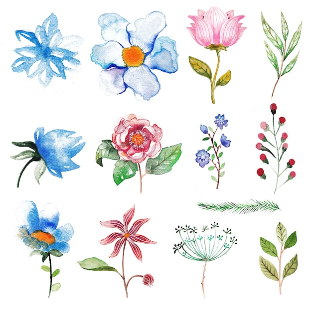 34 ideas for privacy in the garden with a decorative.htm watercolor flower collection premium vector  watercolor flower collection premium