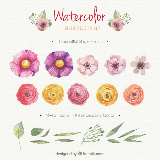 Watercolor flowers and leaves DIY pack Free Vector