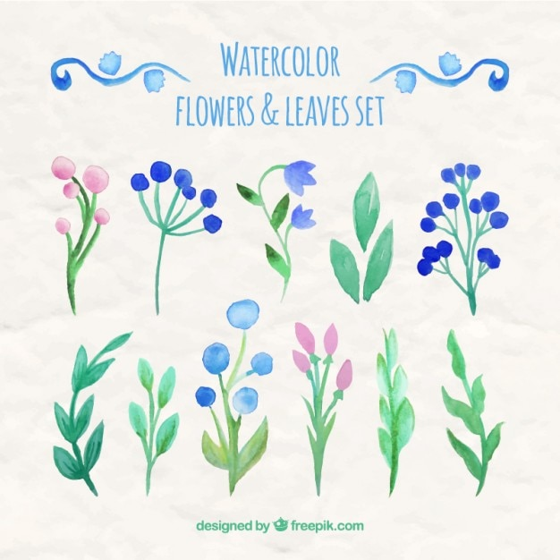 Watercolor flowers and leaves set