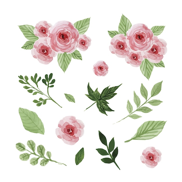 Watercolor flowers and leaves set Free Vector